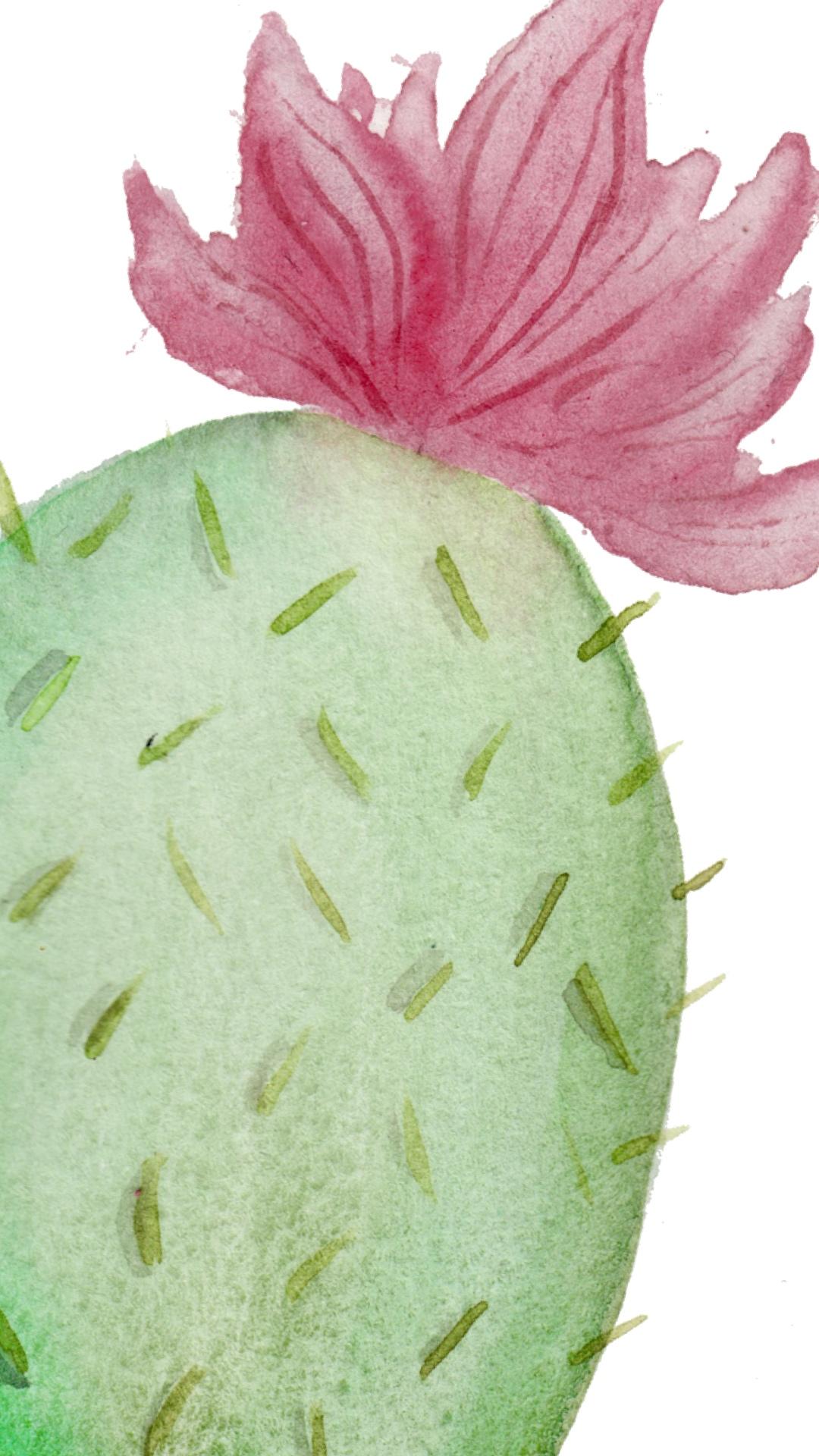 phone wallpaper watercolor cactus