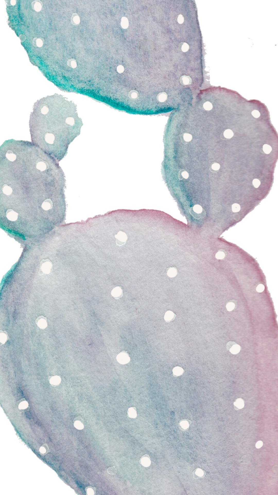 phone wallpaper watercolor cactus