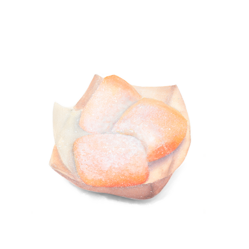 watercolor food illustration  beignet