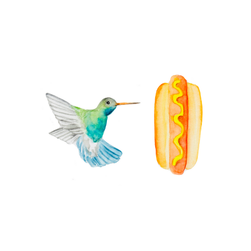 Watercolor bird illustration of a hummingbird with a hotdog.