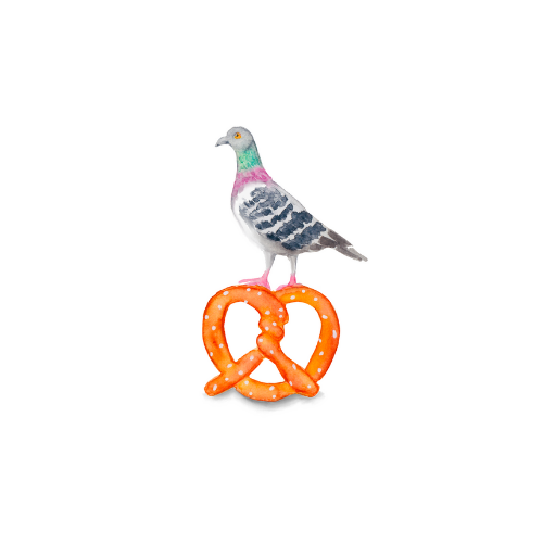 Watercolor pigeon illustration on a pretzel.